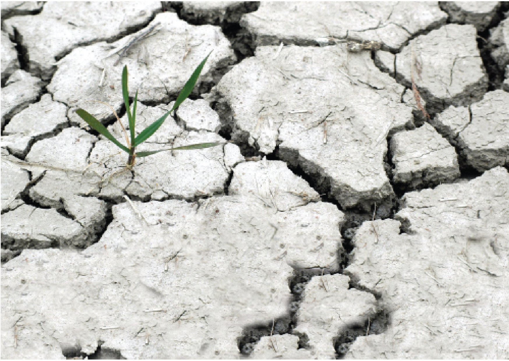 Environmental degredation